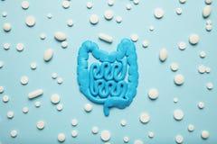 Intestinos y p?ldoras, probiotics, antibi?ticos Destripe la protecci?n, la recuperaci?n de la enfermedad y el tratamiento imagenes de archivo