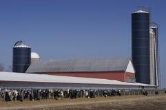 intimorisce il latte Wisconsin moderno dello stabilimento lattiero-caseario Fotografie Stock