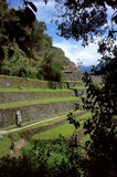 The Intipata ruins on the Inca Trail Stock Photo