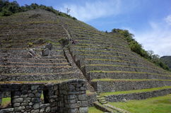 The Intipata ruins on the Inca Trail. The stairway up the Intipata ruins on the Inca Trail Royalty Free Stock Image