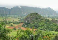 Intorno alla valle di Vinales in Cuba Immagini Stock