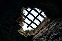 intrappolato Fotografie Stock
