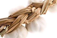 Intrecciatura dell'aglio, primo piano, DOF poco profondo, isolato su w Fotografia Stock Libera da Diritti