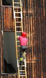 Intrepid head of firefighters climbing a ladder Stock Image