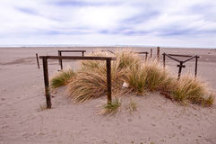 Intressant träkonstruktions- och gräsplanvegetation på den sandiga stranden royaltyfria foton
