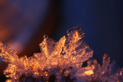 Intricate Backlit Hoarfrost Ice Crystals Stock Photos