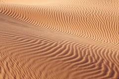 Intricate curves of sand waves Royalty Free Stock Photos