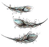 Intricate Decorative Feathers Illustration Stock Image