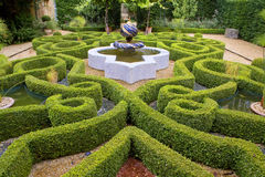 Intricate knot garden. Topiary knot garden with Arabian style fountain in the grounds of historic estate Royalty Free Stock Images