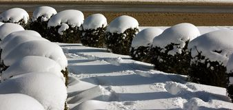 Intricate patterns formed in snow; Lake Placid, New York, USA royalty free stock photo