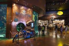 Intérieur de casino de Silverton à Las Vegas, nanovolt le 20 août 2013 Images libres de droits