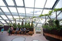 Intérieur de dôme de fleur dans les jardins par la baie, SINGAPOUR Images stock