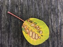 Intriguing leaf on a wooden surface. Yellow leaf with beautiful pattern Royalty Free Stock Photography