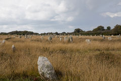 Intriguing standing stones at Carnac in Brittany, north-western France. Intriguing standing stones at Carnac in Brittany in north-western France Royalty Free Stock Photos