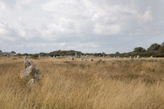 Intriguing standing stones at Carnac in Brittany, north-western France. Intriguing standing stones at Carnac in Brittany in north-western France Royalty Free Stock Images