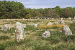 Intriguing standing stones at Carnac in Brittany, north-western France Stock Images