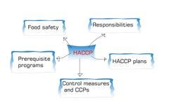 A introdução ao padrão de HACCP, haccp é ponto de controle crítico da análise de perigo ilustração do vetor