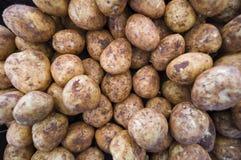 Introduca le patate sul mercato Immagine Stock Libera da Diritti
