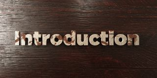 Introduction - grungy wooden headline on Maple  - 3D rendered royalty free stock image. This image can be used for an online website banner ad or a print Royalty Free Stock Images