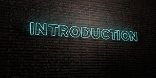 INTRODUCTION -Realistic Neon Sign on Brick Wall background - 3D rendered royalty free stock image Stock Photos