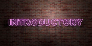 INTRODUCTORY - fluorescent Neon tube Sign on brickwork - Front view - 3D rendered royalty free stock picture. Can be used for online banner ads and direct Stock Images