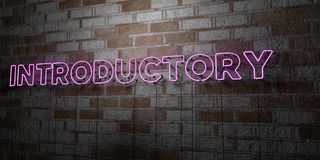 INTRODUCTORY - Glowing Neon Sign on stonework wall - 3D rendered royalty free stock illustration. Can be used for online banner ads and direct mailers Stock Photography