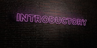 INTRODUCTORY -Realistic Neon Sign on Brick Wall background - 3D rendered royalty free stock image. Can be used for online banner ads and direct mailers Royalty Free Stock Images