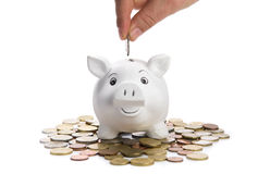 Introduza a moeda Fotografia de Stock Royalty Free