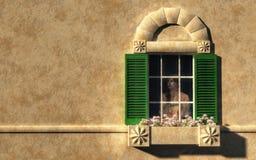Introvertido en una ventana ilustración del vector