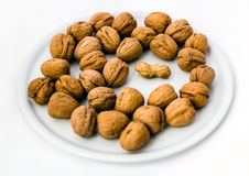 The Intruder. Peanut and Walnuts Stock Photography