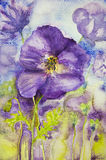 Intryck av violets i ett fält Royaltyfri Foto