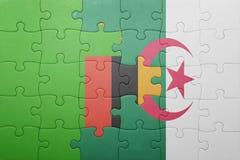 intryguje z flaga państowowa Algeria i zambiowie Zdjęcie Royalty Free