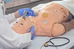 Intubazione endotracheale Abilità mediche di pratica su un manichino medico Istruzione medica Tecnologie moderne nell'addestramen immagine stock libera da diritti