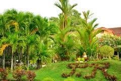 Intymnej siedziby VIP kurortu inicjały w Negros orientale, Filipiny zdjęcie royalty free