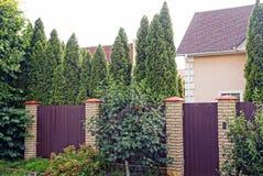 Intymny długi brązu ogrodzenie z zamkniętym drzwi metal i ceglani outside w zielonej trawie i tęsk iglaści drzewa zdjęcia royalty free