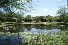 Intymny Gemowy Reseave w Południowa Afryka obrazy stock