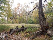 Inukshuk na floresta Imagem de Stock