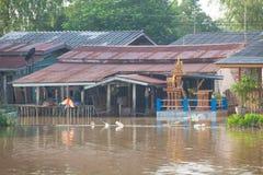 Inundação da casa em Tailândia Imagens de Stock Royalty Free
