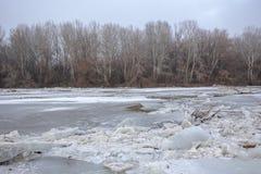 Inundação da mola, banquisas de gelo no rio Foto de Stock
