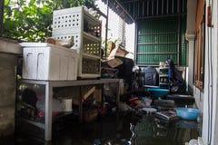 Inundação de Nonthaburi no estilo de vida de Tailândia 2011-The dos povos no mas Foto de Stock Royalty Free