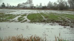 Inundação do campo de exploração agrícola, chuva pesada 4K UHD filme