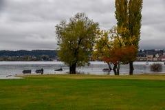 Inundação do lago fotos de stock royalty free