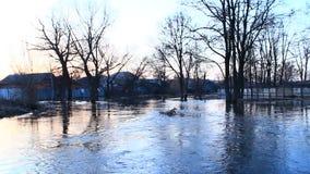 Inundação do rio na mola na cidade durante o derretimento da neve Disastre natural video estoque