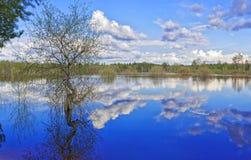 Inundação em um grande lago Siberian Fotografia de Stock Royalty Free