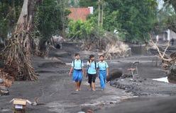 Inundação fria da lava Fotografia de Stock