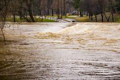 Inundação no rio de Roanoke em Smith Park imagem de stock