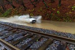 Inundação no Transcarpathia Imagem de Stock