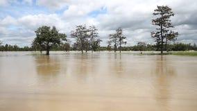 Inundação, volume de água video estoque