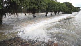 Inundação, volume de água sobre a estrada vídeos de arquivo