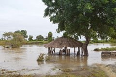 Inundações cingalesas Foto de Stock Royalty Free